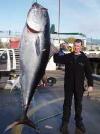 WSAC boat and shore fisho Jason McMahon with his 203kg Pacific Bluefin Tuna, caught out from Westport in August